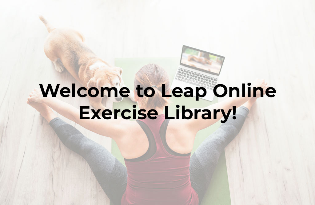 Online-exercise-videos-Pilates-Yoga-Barre